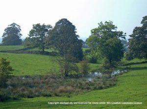 swanscoe-fields